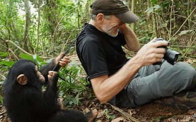 Oregon Zoo Pub Talks kick off with Gerry Ellis and GLOBIO's Apes Like Us project.
