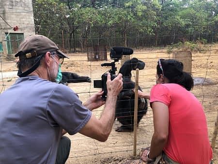 Gerry Ellis filming vet Thalita Calvi at Chimfunshi