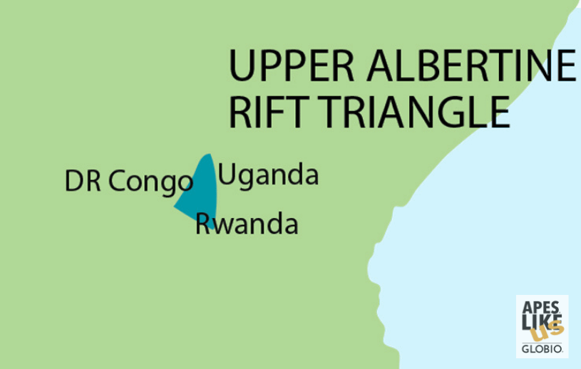 Upper Albertine Rift Triangle - Encompassing DR Congo, Rwanda, and Uganda
