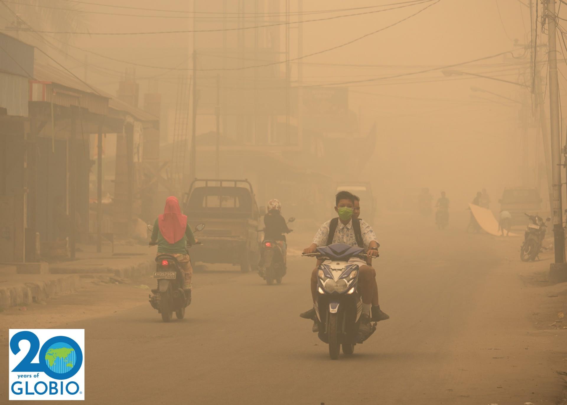 2015 Fires in Borneo