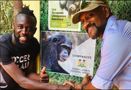 chimpanzee Sierra Leone national animal