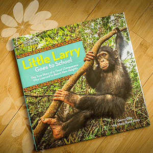 Little Larry Book