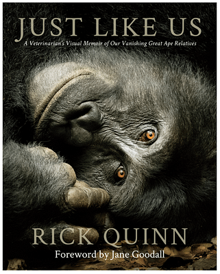 Just Like Us book cover