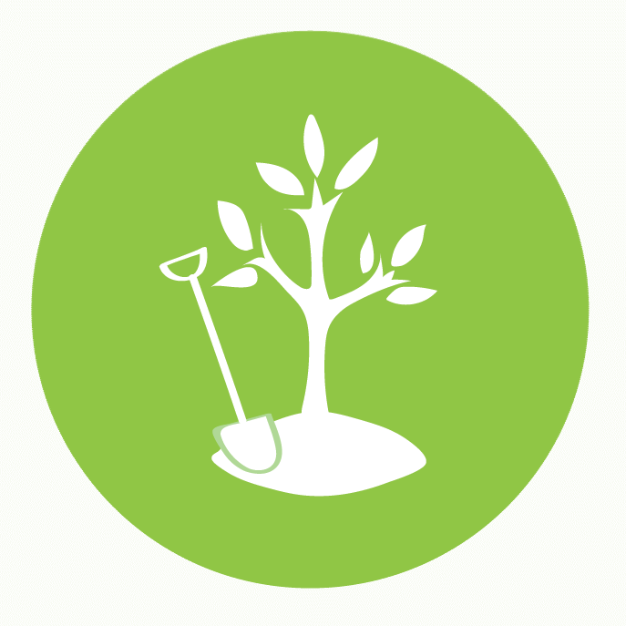 Orangutan Tree Project Logo